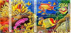 Fish of Israel