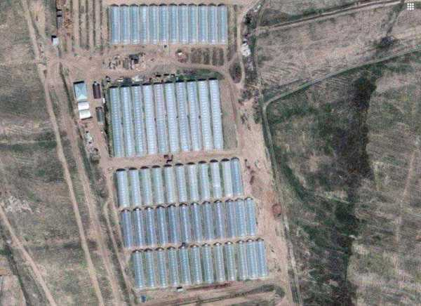 View from the satellite: farm Saburov.
